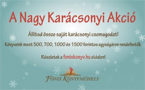 fonix_karacsonyi_akcio_2014_timeline